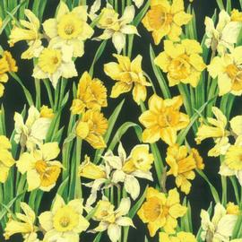 retrodressdaffodil