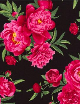 bettypeony