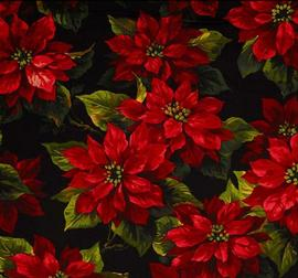 shirleypoinsettia
